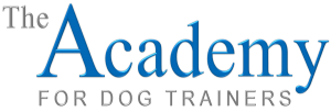 Academy Logo PNG